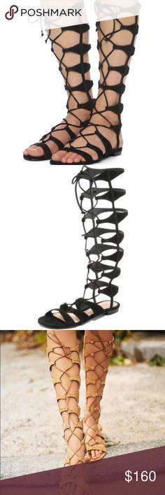 NEW Schultz Gladiator Sandals - black suede Super gorgeous, perfect for summer black gladiator sandals! Brand new in box, mint condition. SCHUTZ Shoes Sandals