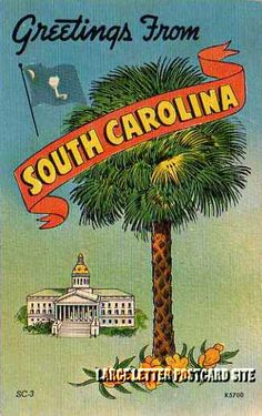 Greetings From South Carolina Rock Hill South Carolina, South Carolina Homes, North Carolina, Southern Charm, Southern Belle, Southern Sayings, Vintage Travel Posters, Vintage Postcards, Sea To Shining Sea