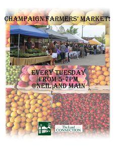 """Give me feedback on """"farmers' market"""", a work-in-progress on @Behance :: http://be.net/wip/1199675/2113361"""