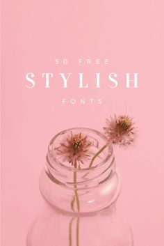 Goodies for your Canva for Work designs! 50 Free Stylish Fonts To Bring A Touch Of Elegance To Any Design