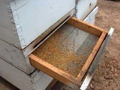 How to Collect Bee Pollen! this is how we do it :)
