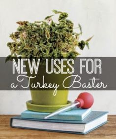 6-New-Uses-For-A-Turkey-Baster