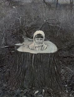 Girl posed in tree stump, early to mid-20th century. From the newly-acquired Florence Rickey George papers, Iowa Women
