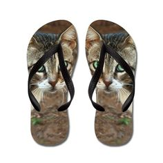 Green Eyed Cat Flip Flops  kids and adult sizes  #cat #cats #flipflops #sandals #catlover #tabby #animal #pet