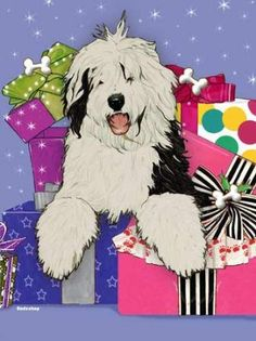 Old English Sheepdog Christmas Cards : 10 Holiday Cards with Red Envelopes - ADORABLE!
