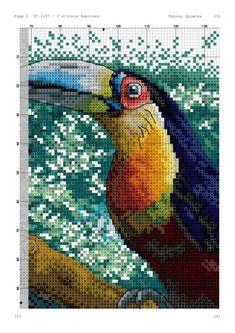 Cross Stitch Bird, Cross Stitching, Parrot, Birds, Gallery, Floral, Crafts, Crossstitch, Fox