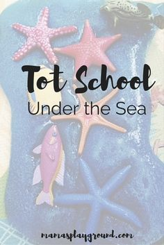 Explore ocean life with your toddler this Summer with an Under the Sea Tot School theme.