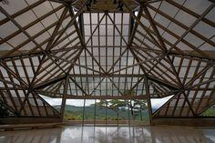 Frank Lloyd Wright, Japan