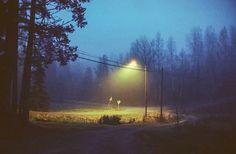 いいね!1,148件、コメント7件 ― WITNESS(@_wtns_)のInstagramアカウント: 「Photo by: @kryosa Selected by: @eliaskrepo #wtns」
