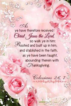 Colossians 2:6-7 KJV