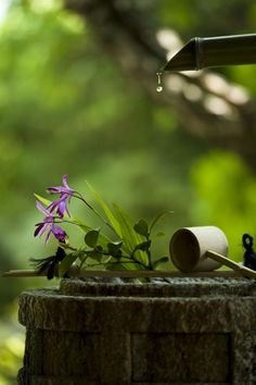 Zen water fountain..... Love these simple water feature.....