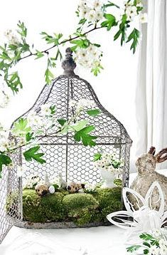 a Bird cage Garden would make a beautiful Fairy garden  sorry no tutorial on this one  just a photo to inspire you