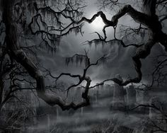 Midnight In The Graveyard II Canvas Print / Canvas Art by James Christopher Hill