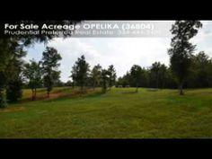 Acreage For Sale: 0 LEE RD 0260 OPELIKA, AL $100000