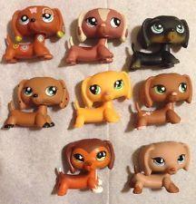 Littlest PET SHOP LPS LOT 8 DACHSHUND DOGS # 675,518,325,1010,1631,556 $250
