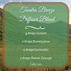 Tundra Breeze Essential Oils Diffuser Blend ••• Buy dōTERRA essential oils online at www.mydoterra.com/suzysholar, or contact me suzy.sholar@gmail.com for more info.