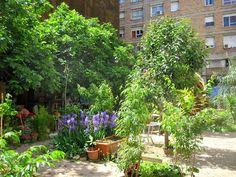 Tot Barcelona: El jardín de las Hespérides