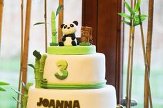 Pandas Birthday Party Ideas | Photo 5 of 31 | Catch My Party