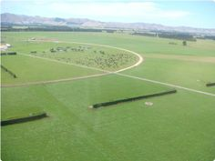 Redpost dairy farm - Waibury Agricultural Farm Investments New Zealand
