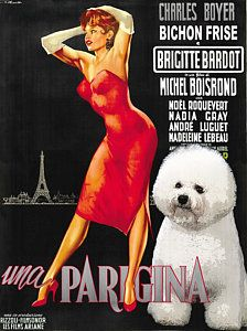 Items similar to Bichon Frise Art Une Parisienne Movie Poster Vintage Print FREE Personalized Dog Bichon Frise Gifts by Nobility Dogs on Etsy Frise Art, Brigitte Bardot Movies, Raining Cats And Dogs, Illustrations And Posters, Vintage Illustrations, Old Dogs, Michel, Vintage Movies, Girls Best Friend