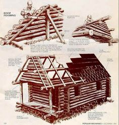 Build Your Own Log Cabin   How To Build A Log Cabin Yourself | Tiny Cabins  | Pinterest | Log Cabins, Cabin And Logs
