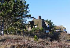 Haus und Natur im Einklang, auf Sylt