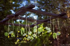 Organic chandelier with hanging flowers and plants. Planning and Design by One Fine Day Events. Photography by Catherine Hall Studios.