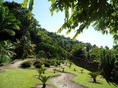 Jardin du Carbet