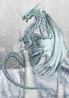 Dragon Drawings | ice dragon by tarjcia digital art drawings fantasy 2006 2013 tarjcia ...