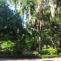Savannah Summer Must-Dos