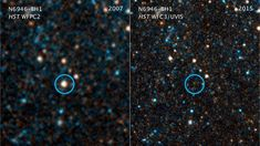 """Astronomers may have watched a star collapse directly into a black hole — minus the supernova. The failed supernova could help understand how stars die. The post Potential """"Failed Supernova"""" Black Hole Discovered appeared first on Sky & Telescope. Carina Nebula, Whirlpool Galaxy, Helix Nebula, Andromeda Galaxy, Space Shuttle, Spitzer Space Telescope, Nasa Space, Black Hole Sun, Giant Star"""