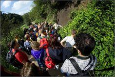 A Giulianello è tempo di raccolta delle erbe spontanee - Latina Biz - Servizi Notizie Eventi Informazioni