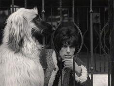 Jeff Beck; captured by Lewis Morley (1967)