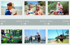 LazingBee Photos NZ (@LazingBeePhotos)   Twitter Kiwiana, New Zealand, Twitter, Photos, Pictures