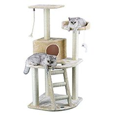 Go Pet Club Cat Tree Condo House, x x Inches, Beige (Renewed)>>> You can find more details by visiting the image link. (This is an affiliate link) Cat Tree Condo, Cat Condo, Cat Activity, Cat Whisperer, F2 Savannah Cat, Sisal Rope, Scratching Post, Cat Supplies, Litter Box