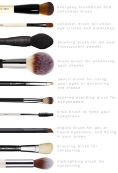 essentail basic makeup brushes kit