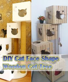 Image result for cat tree shelters