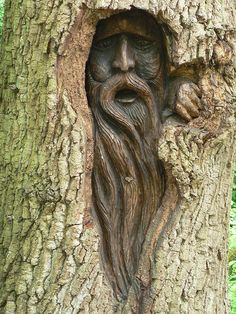 Tree Carving of a wood spirit Más Land Art, Tree Faces, Tree Carving, Green Man, Wood Sculpture, Metal Sculptures, Abstract Sculpture, Bronze Sculpture, Tree Art