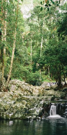 Hidden in the Gold Coast hinterland - by Melissa Findley