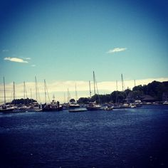 Boats in Camden, ME ~sms 06/13~