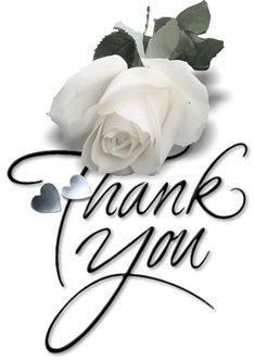 Good Morning Friends and Family Thank You Qoutes, Thank You Messages Gratitude, Thank You Gifs, Thank You Pictures, Thank You Images, Thank You For Birthday Wishes, Thank You Wishes, Thank You Friend, Birthday Greetings