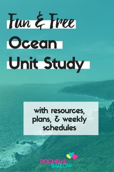 Join us in our much-anticipated Ocean Unit Study adventure. We're using some sweet fish toys to make our studies especially great!