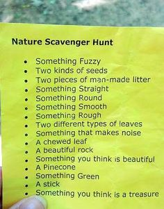 Nature scavanger hut