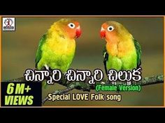 "The post ""Chinnari Chinnari Chiluka Telugu Song Dj Songs List, Dj Mix Songs, Love Songs Playlist, Movie Songs, Hit Songs, Country Music Love Songs, All Love Songs, Audio Songs Free Download, New Song Download"