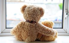 Find out why the teddy bear could be considered the official toy of the White House.