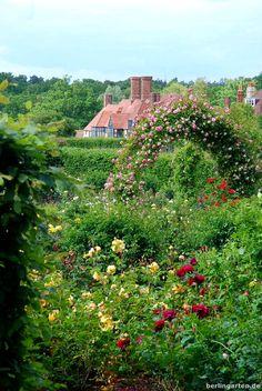 Rosengarten in Wisley.