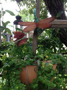 Flea Market Garden-Dragonflies