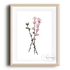Lola & George - Floral Stalks Print Printed on quality silk card. Available in or size. Unframed - any frames and/or additional items shown in product photos not included. A3 Size, Point Of Sale, Plant Decor, A5, Frames, Silk, Printed, Floral, Photos
