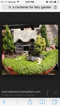 Love this thatched cottage style fairy garden