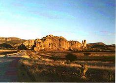 Durango al norte cuenta co otra gran reserva de la biosfera llamada del Bolson de Mapimi o zona del silencio donde tambien tiene gran numero de especies de flora y fauna.